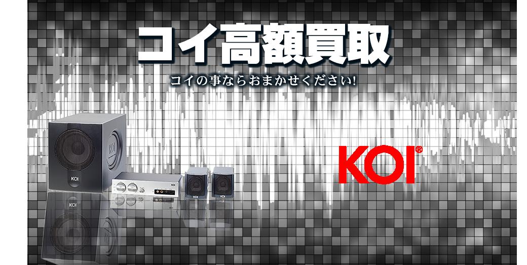 KOI/コイの高額買取